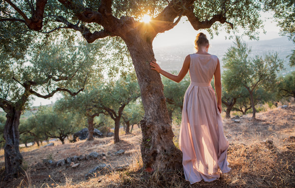 Women and olive trees